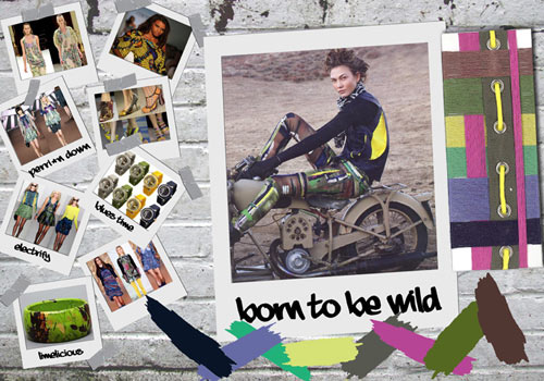 Born to Be Wild color trend